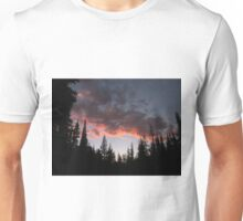 Oregon sunset Unisex T-Shirt