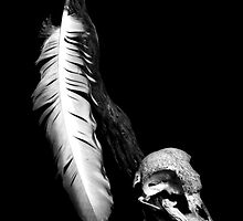 Feather,Skull and Light by DeeCarmack