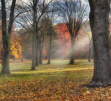 A November Morning  by Bill Wakeley