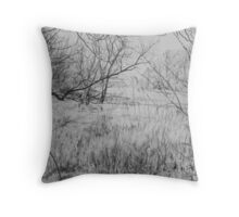 Spring in St. Ives Throw Pillow