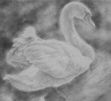 Swan on a lake by iannigelallan
