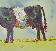 Belted Galloway Cow by MikeJory