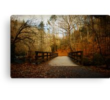 Walking into The Great Smoky Mountains Canvas Print