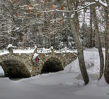 Stone Bridge  by Monica M. Scanlan