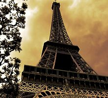 Eiffel Tower by boschimages