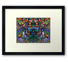 The Mirrior Framed Print