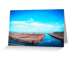Farmlands - The Netherlands Greeting Card