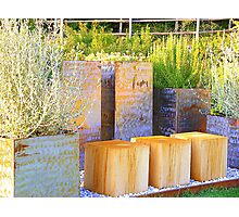 The Tuscan Herb Garden Photographic Print