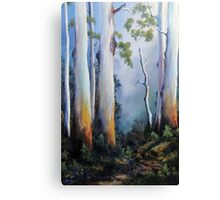 Gumtrees After The Rain Canvas Print