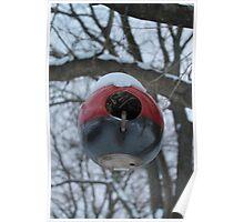 Round Red Bird House  Poster
