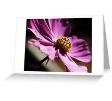 Pretty Purple Flower Greeting Card