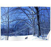 Dog among the trees Poster