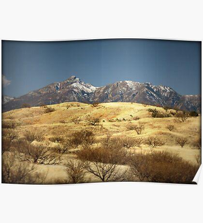 Snowy Peaks on a Desert Plain Poster