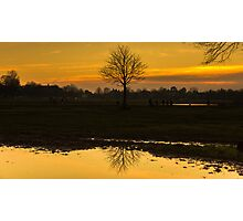 "simplicity ""lone tree"" Photographic Print"