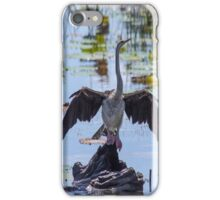 bird spreads beautiful wings in Mary river iPhone Case/Skin