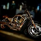 Harley-Davidson, V-rod by Alex Volkoff