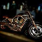 Harley-Davidson, V-rod by Alex Volkoff