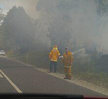 Bushfire, Boco Siding, Tasmania, Australia by Margaret  Hyde