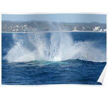 Humpback Whale Breach Might Splash Poster