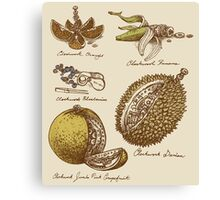 Clockwork Fruit Canvas Print