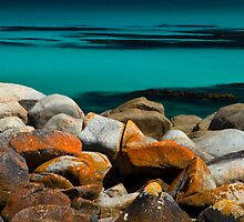 Gardens Rocks - Bay of Fires, Tasmania by clickedbynic