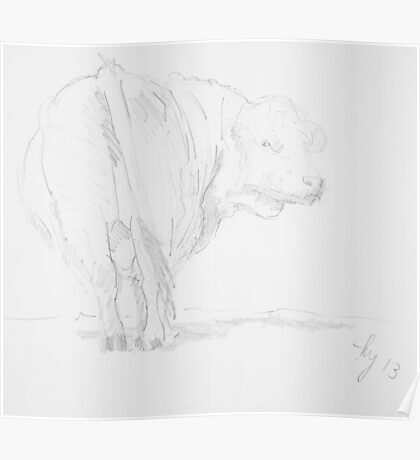 Cow Drawing Poster