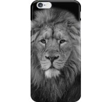 Asiatic Lion iPhone Case/Skin