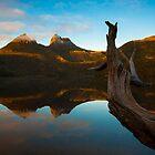 Golden Cradle Mountain by Steven Johnson