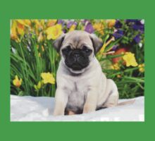 Cute Puppy Caesar the Pug by AiReal Apparel Kids Tee