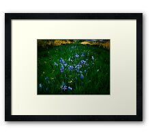 Love, Dream, Wish ~ Wild Camas ~ Framed Print