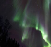Northern Light Rays by striberny