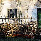 Farmhouse Near Berlin by Imi Koetz