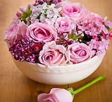 Roses by Elisabeth Coelfen