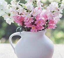 Snapdragon flowers by Elisabeth Coelfen
