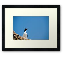 Look At Me Framed Print