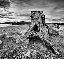 Remnants by Peter Denniston