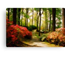 Dreamy Path Canvas Print