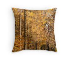 Autumn colours, riverside walk, November 2103  Throw Pillow