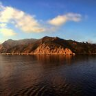 Good Morning Catalina! by Polly Peacock
