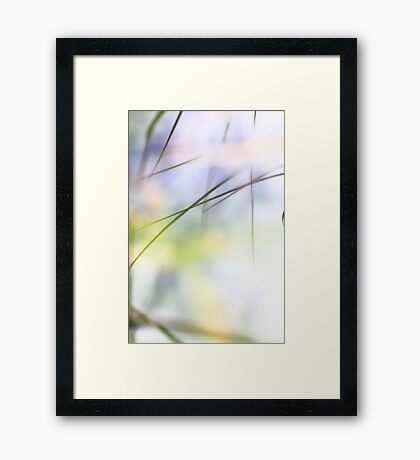 Grass reflected in a lake Framed Print