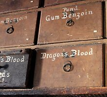 Dragon's blood by Kelly Morris