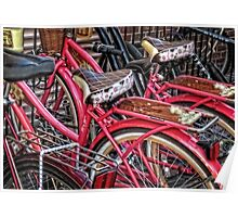 Twins - Bicycle Art By Sharon Cummings Poster