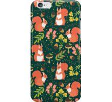 Cute squirrels iPhone Case/Skin