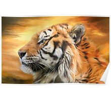 Tiger Sky Poster