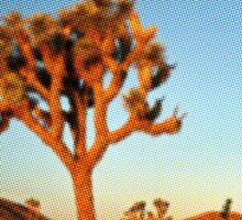 Kyuss - Desert Rock Sticker