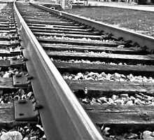 Tracks to Your Heart          B & W                               7452 by KarenDinan