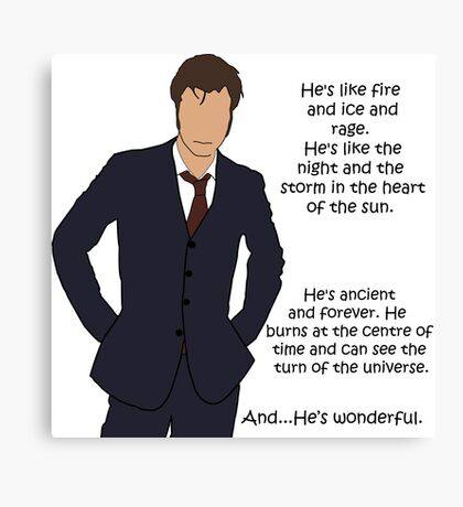 Doctor Who - Fire and Ice and Rage Canvas Print