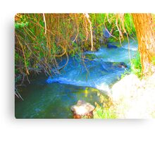 """""""Canyon Stream"""" by Carter L. Shepard Canvas Print"""