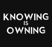 Knowing Is Owning by ChasingTheWind