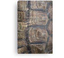 Tortoise Shell Metal Print
